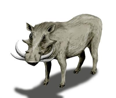 suidae extinct Metridiochoerus