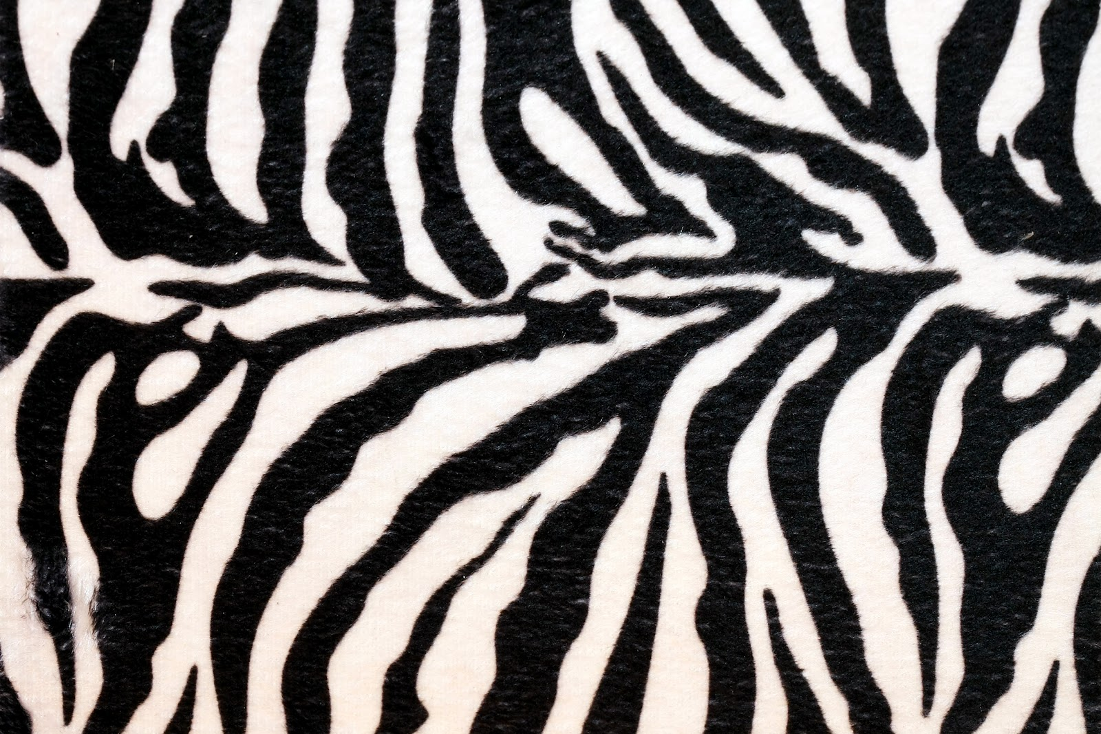 Zebra Print Backgrounds on Giraffe Coloring Pages