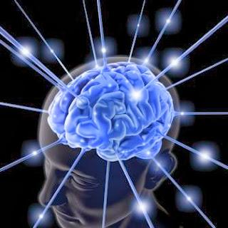 cerebro elimina basura mientras duermes