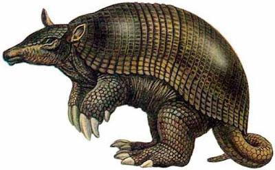 Pampatherium en Argentina