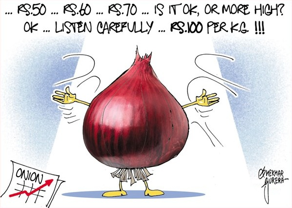 Shekhar Gurera: Onions.