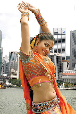 actress light box genelia saree navel hot