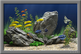 Dream Aquarium 1.2413 Screensaver Completo