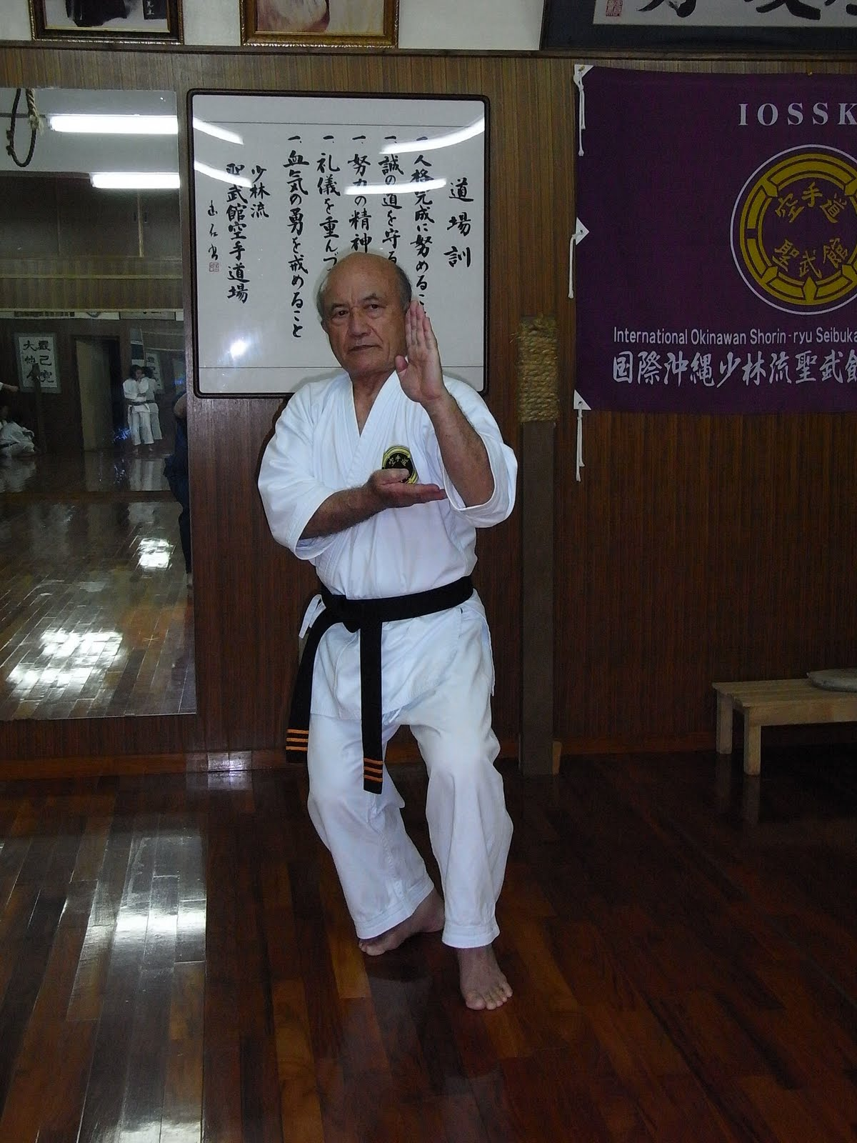of the seibukan shorin ryu