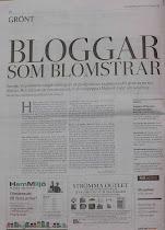 Reportage i Svenska Dagbladet