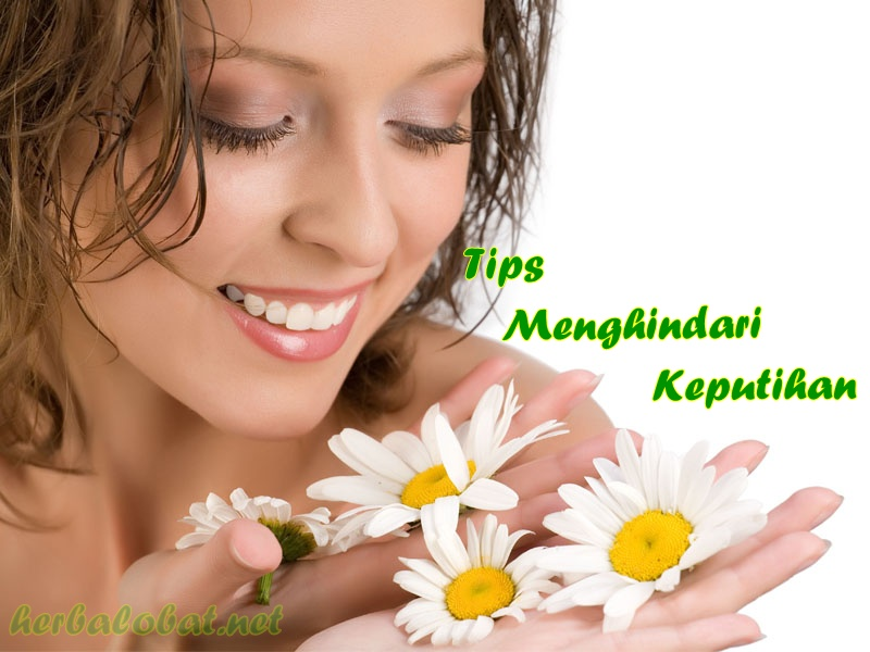 obat herbal untuk kista atau miom