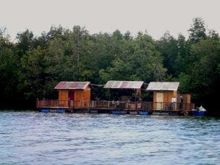 Download this Rumah Rakit Dalam Sungai Sepang Yang Terletak picture