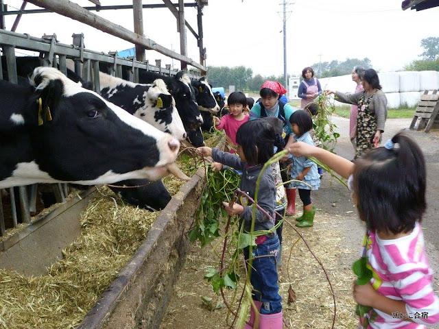 Cách người Nhật tăng cường sức bền bỉ cho trẻ