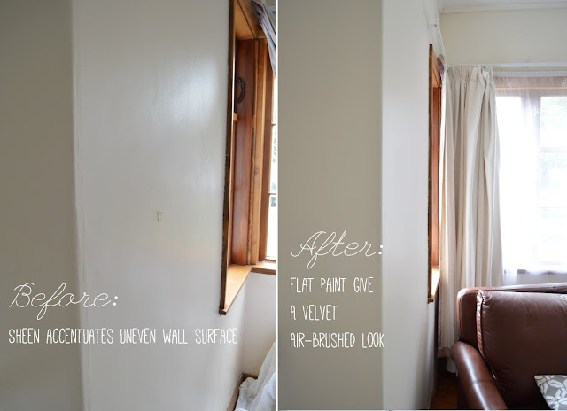Low sheen vs egg shell paint in interior - Amy MacLeod