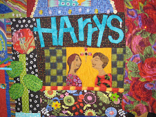 A Portion of my New Mexico Story Quilt