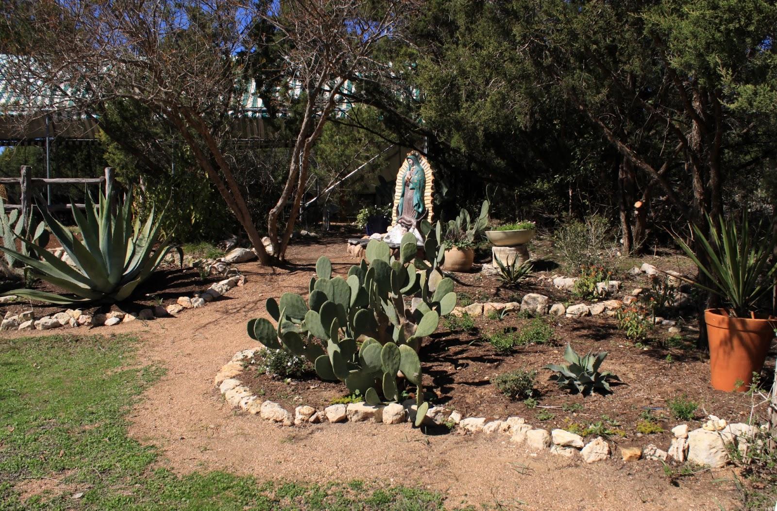 Rock Oak Deer Visiting The Natural Gardener