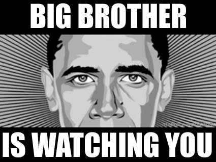 ndaa+2013+big+brother.jpg