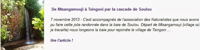 http://blogger-expatries-a-mayotte.blogspot.com/2013/11/de-mtsangamouji-tsingoni-par-la-cascade.html