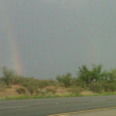 Alvin's Rainbow