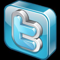 Twitter 3D Logo Icon