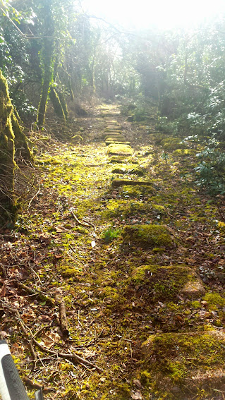 Train Track remnants in Cornwall