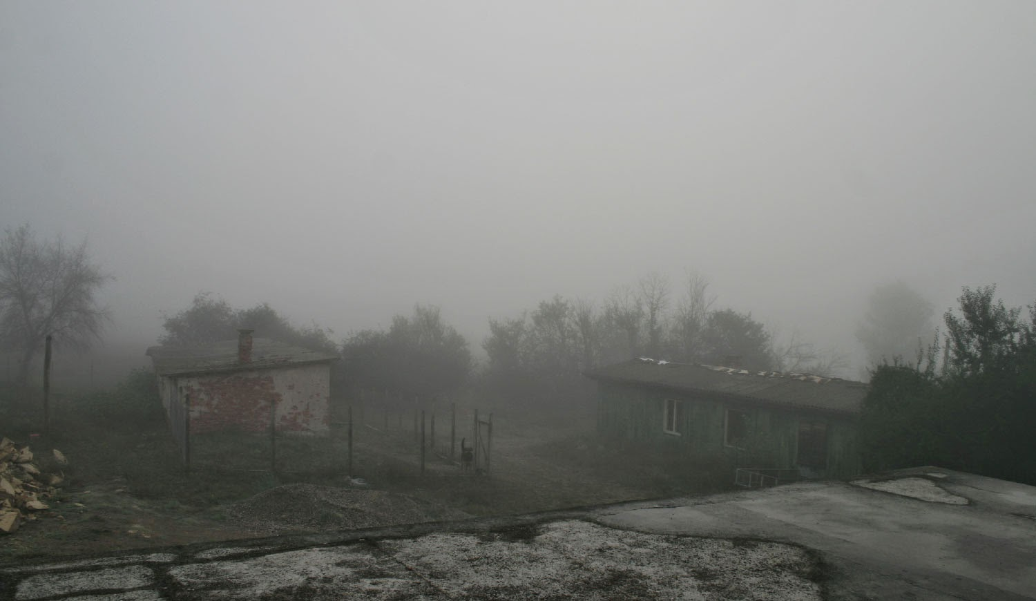 A really thick fog this morning
