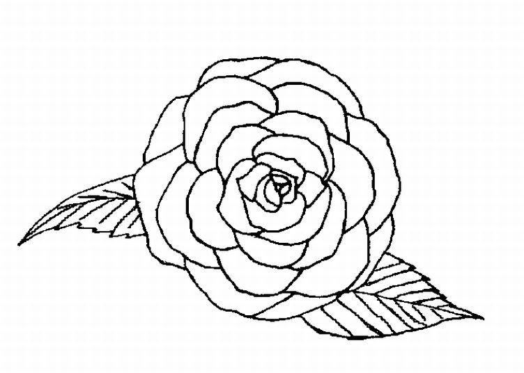 Krafty Kidz Center Roses Coloring Pages Roses Colouring Pages