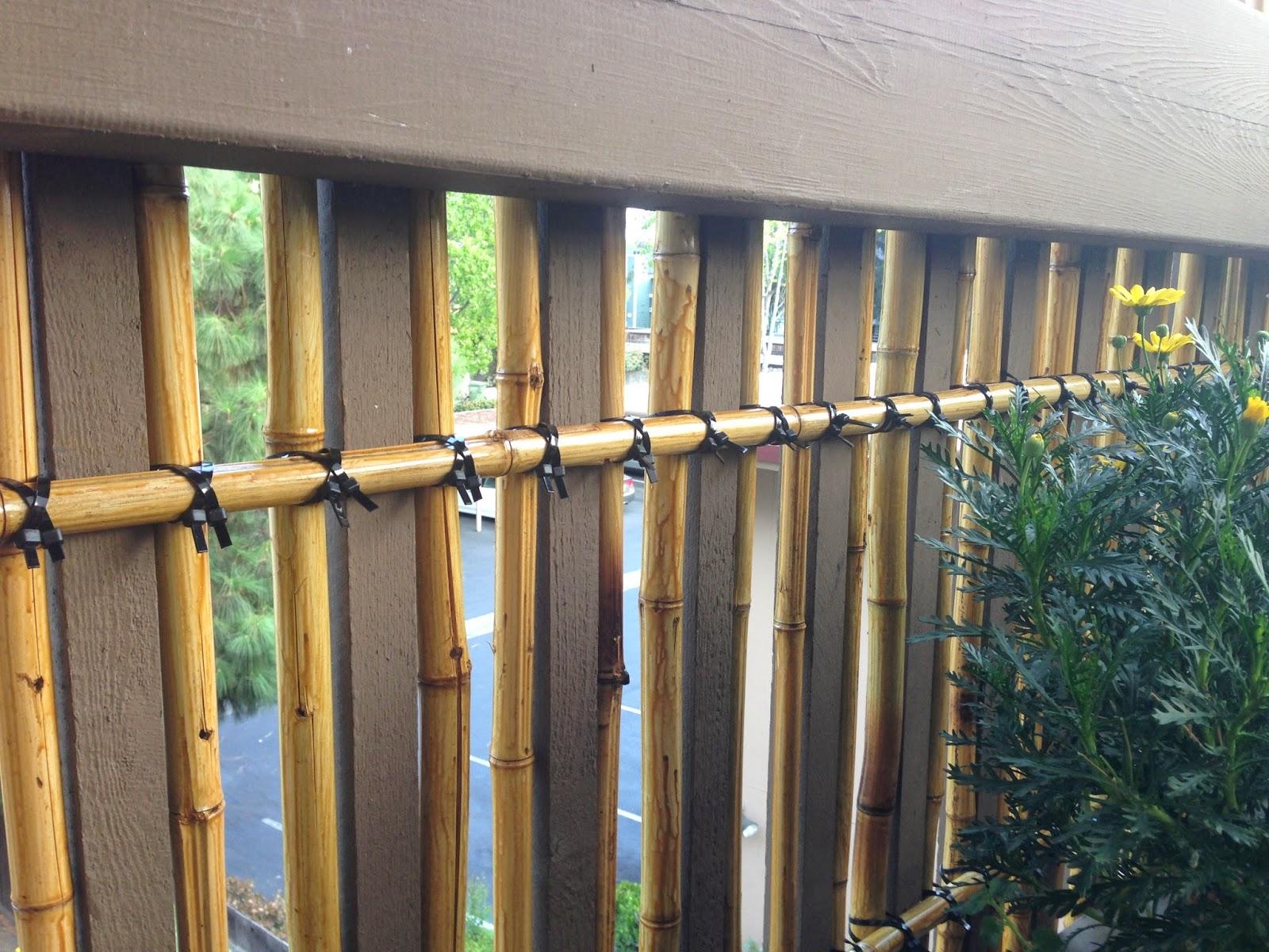 Balcony container garden bamboo privacy screen trellis for Outdoor bamboo privacy screen