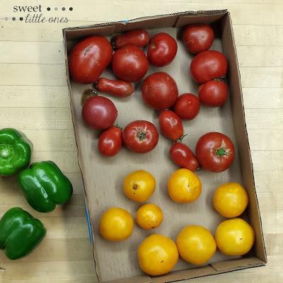 Easy, Delicious Appetizer and Snack: Garden Salsa Recipe (Homemade and Freezer Friendly) - www.sweetlittleonesblog.com
