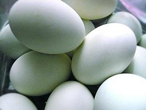 Bisnis Telur Asin di Rumah