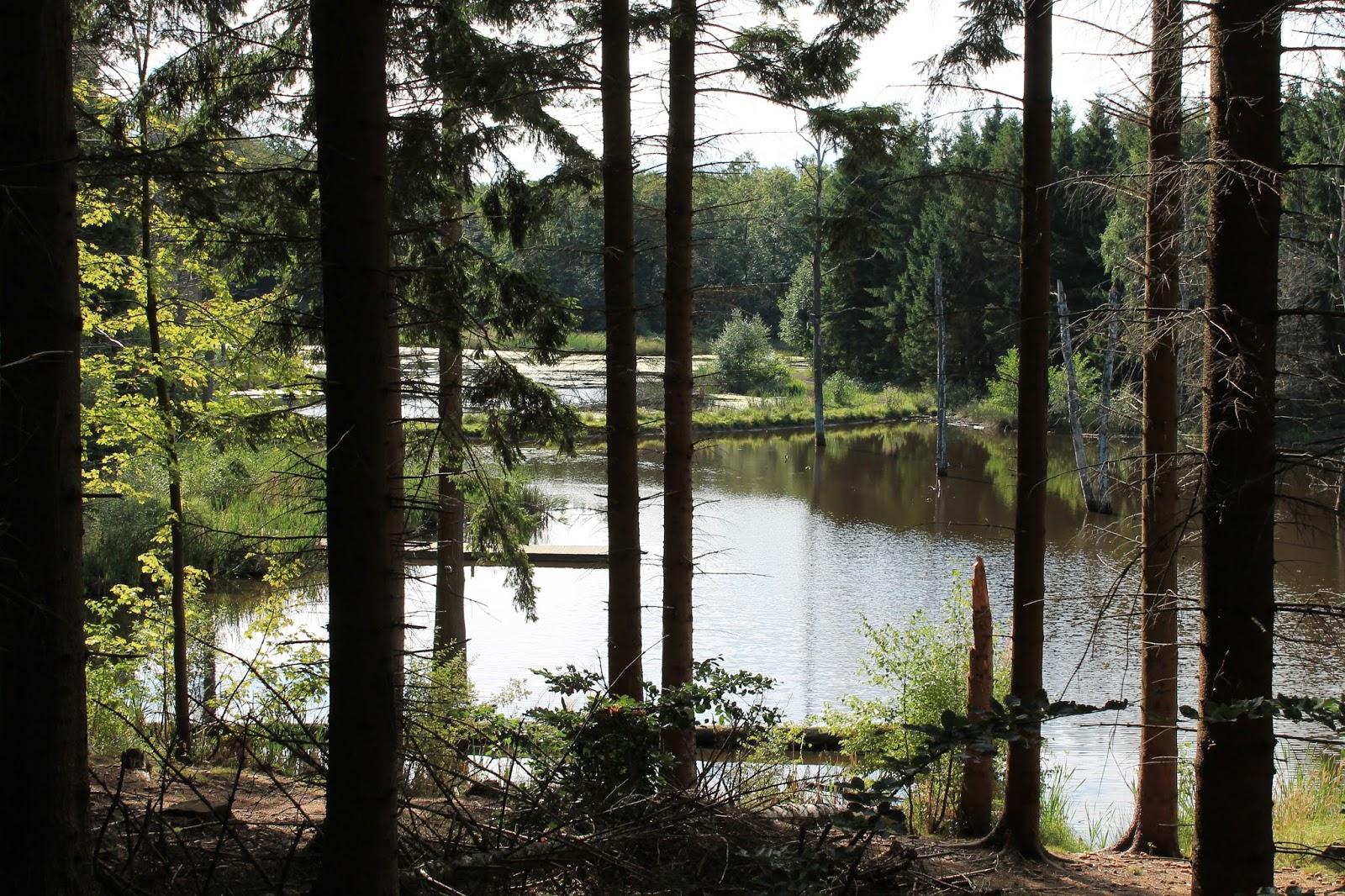 Vandringsløse Tidende: august 2013