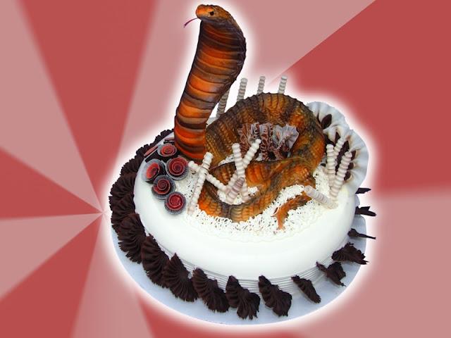 Hình ảnh bánh sinh nhật hình còn rắn
