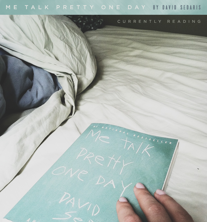 david sedaris i like guys essay David raymond sedaris (/ s  he wrote about the conversation and its aftermath in the essay repeat after me sedaris recounted that  a play by david sedaris.
