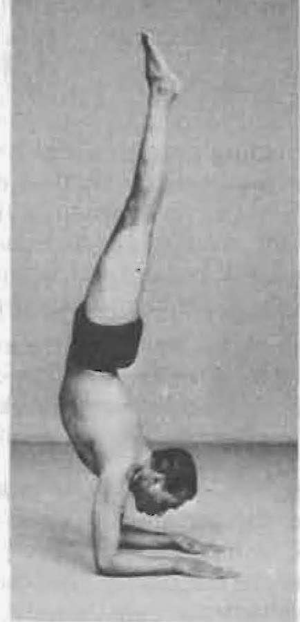 Yoga Postura Pincha Mayurasana - B.K.S. Iyengar
