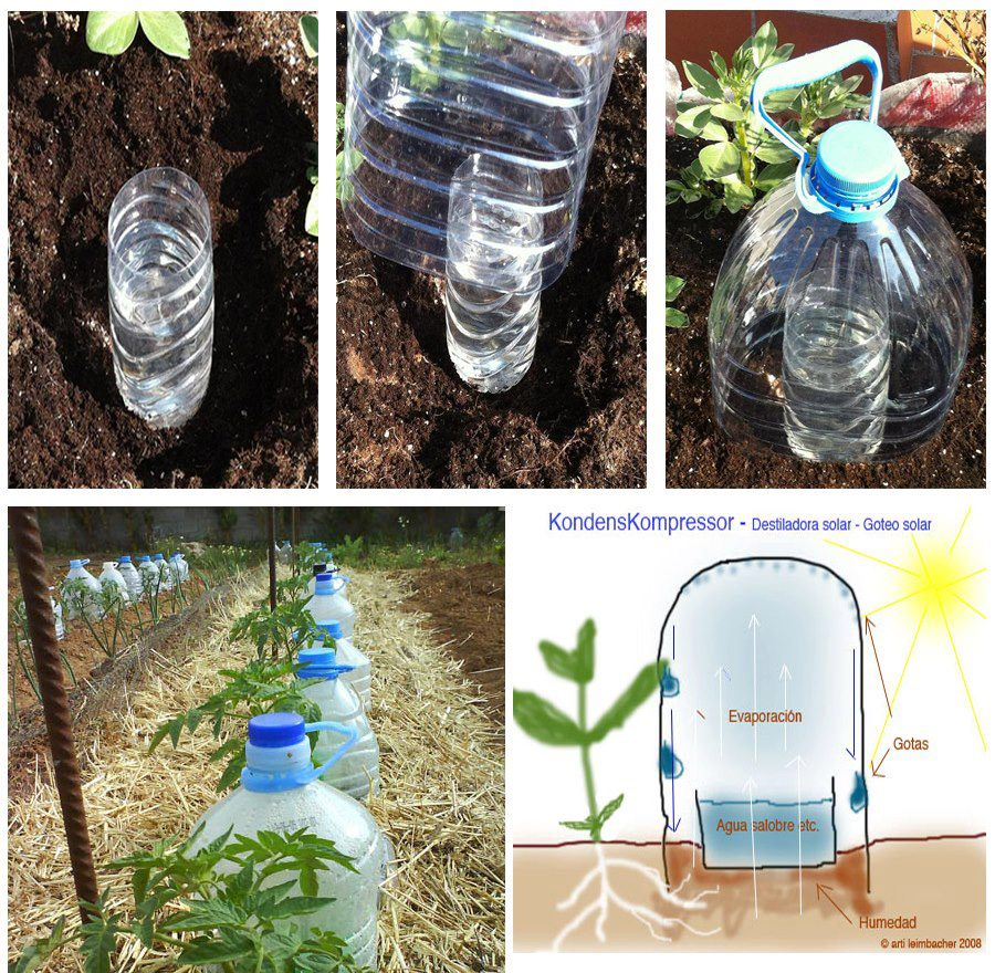Outside the vault 70 things you can do with plastic bottles for Arrosage goutte a goutte fait maison