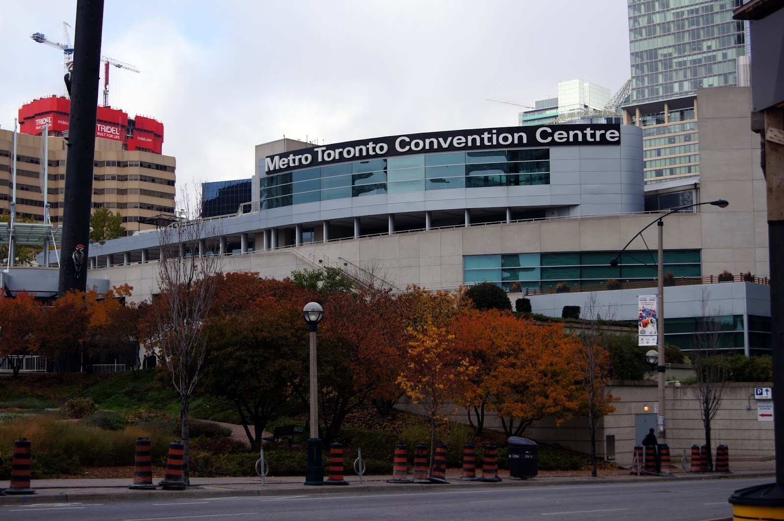 All The Things You Can See At The Metro Toronto Convention