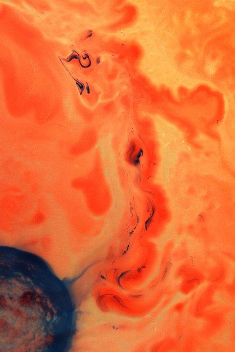Bacteria paintings