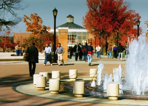 College Of Staten Island Undergraduate Majors