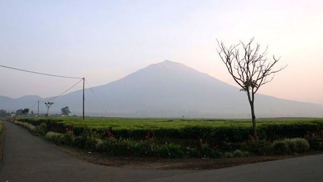 Hiking: Gunung Kerinci, Indonesia