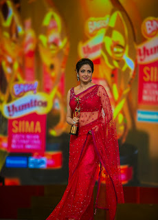 South Indian Actresses Pictures at SIIMA Awards 2013  0105.jpg
