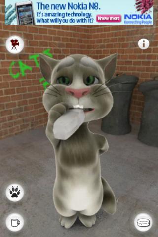 Talking tom the cat