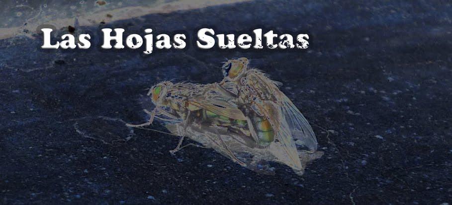 Las Hojas Sueltas