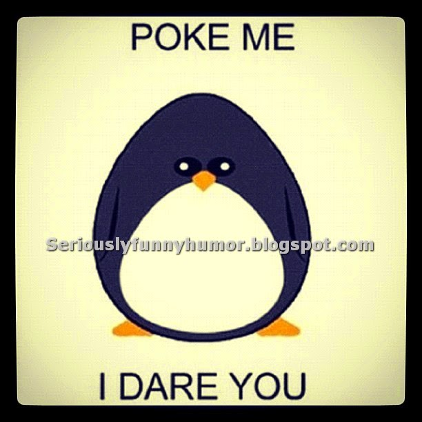 Poke me, I dare you!