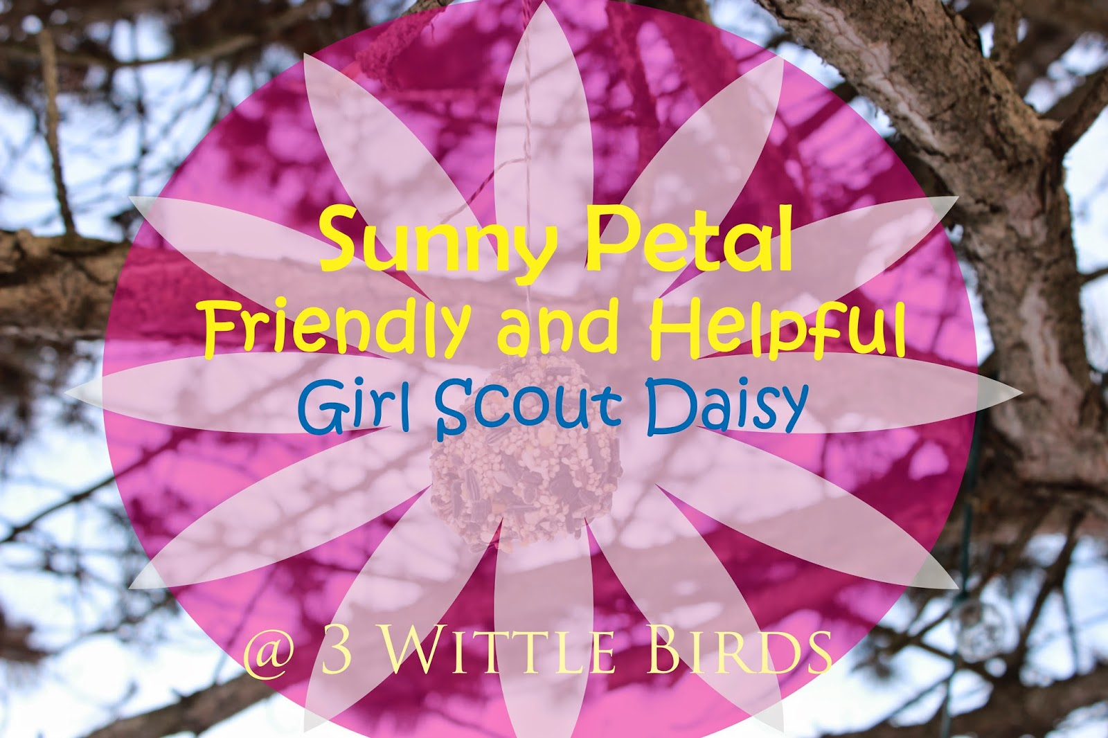 3 Wittle Birds Girl Scout Daisy Meeting Sunny Petal Friendly And