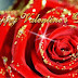 Valentine,s Day Red Rose-Flower Greeting Cards Pictures-Valentine Gifts-Valentines Love-Heart Card Image
