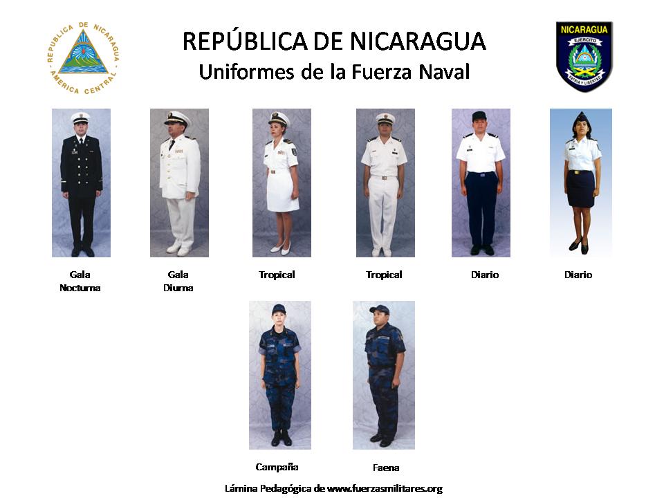 fuerza armada sudamericana: