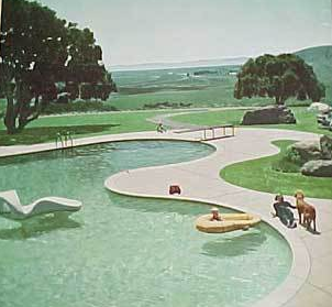 Retro info mid century modern landscaping design books for Pool design book