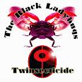 The Black Ladybugs