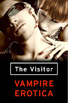 The Visitor: vampire erotica