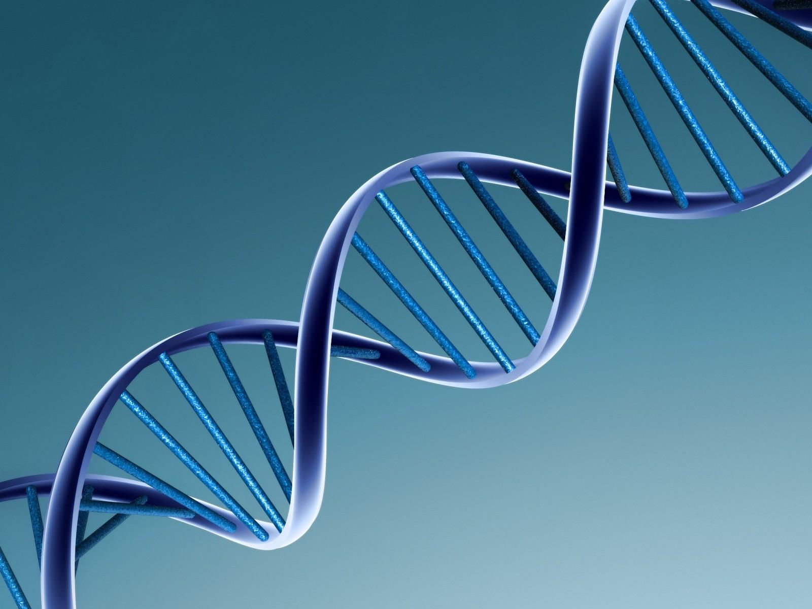 http://4.bp.blogspot.com/-fA2jCJKilBk/T1TZsZt6VbI/AAAAAAAAACs/Q5cTgpYWgTk/s1600/DNA.jpg