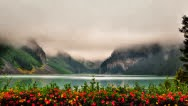 Mlha vnášející se nad jezerem s květy v popředí
