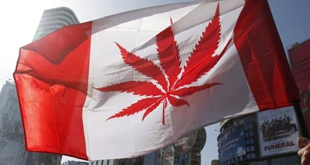 O Canadá e o uso medicinal da maconha