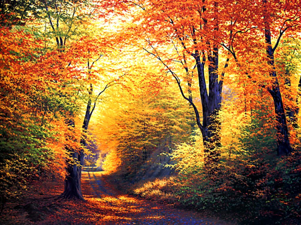 autumn wallpaper free
