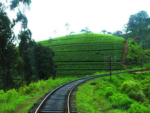 Sales Sri Lnaka: Must visit trip by train to Badulla