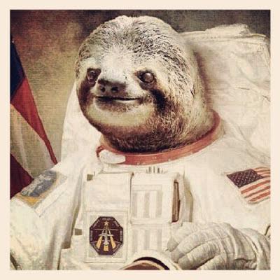 Sloth+Astronaut.jpg